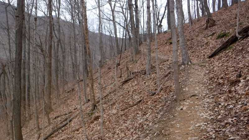 Climbing North Old Mac Trail