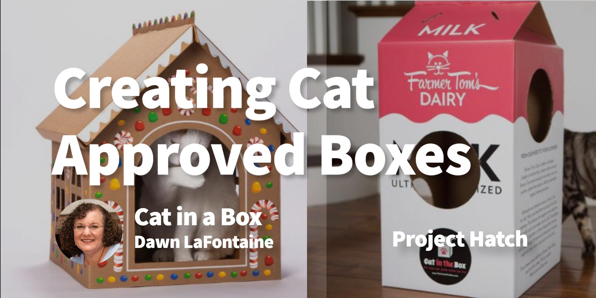 Cat in a Box Dawn LaFontaine