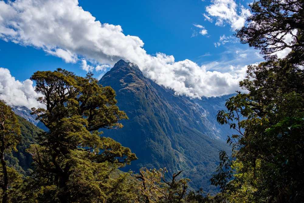 Key Summit hike, Fiordland National Park