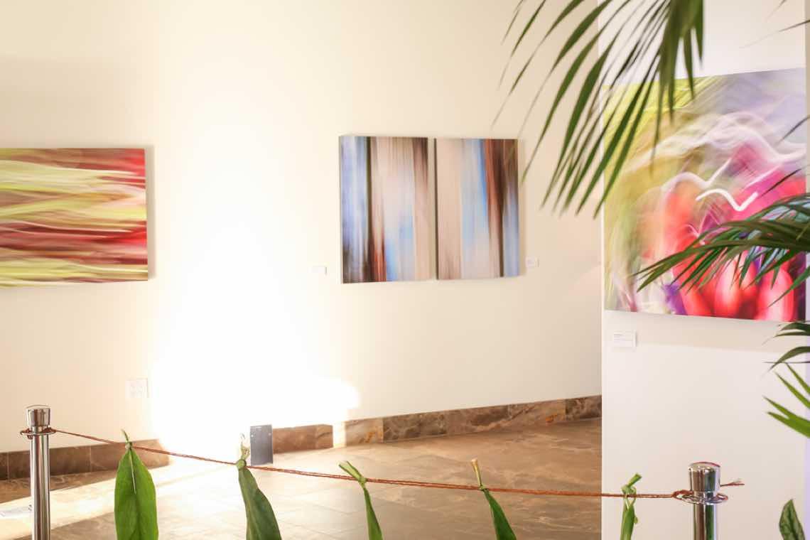 Shane Robinson Fine Art Gallery Wailea Andaz Opening