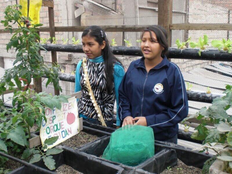 Planten verzorgsters in opleiding