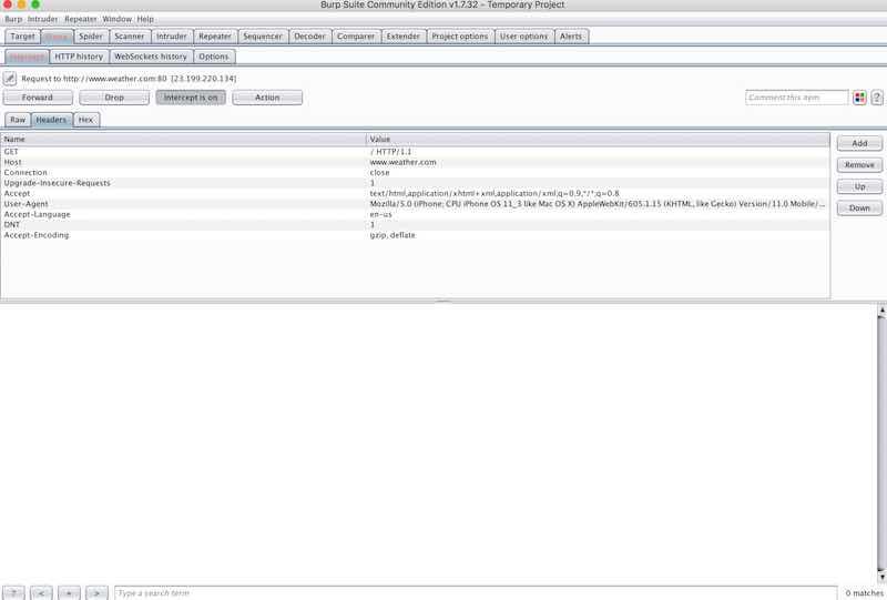 Burp screenshot 4, intercepting traffic