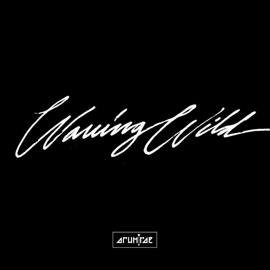 album art for Waving Wild by Arum Rae