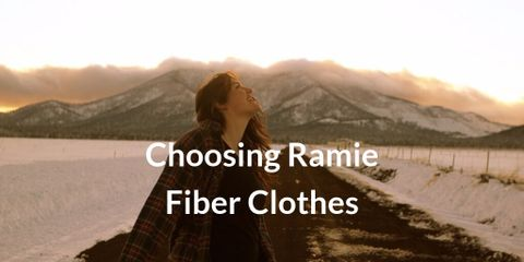 Ramie fibers are very long and fine, have a natural shine and are very strong, even when they are wet. They look very much like silk
