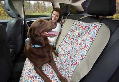 Protect Your Car from Dog Fur and Mud