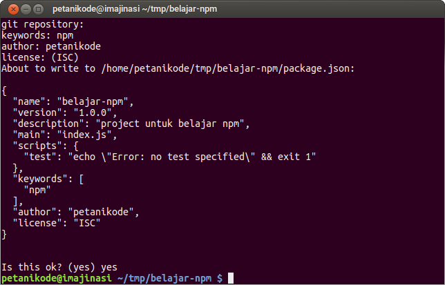 Making package.json file with NPM