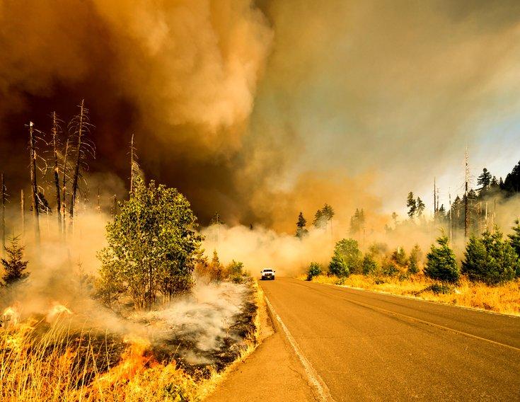 Car driving through forest fire
