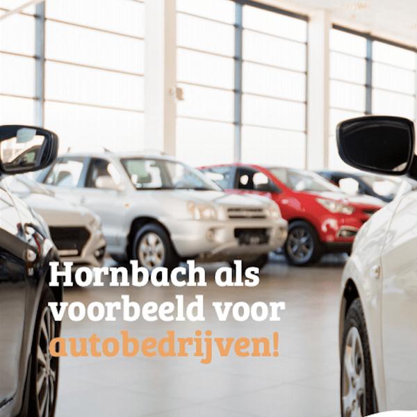 E-book: Hornbach als voorbeeld voor autobedrijven!