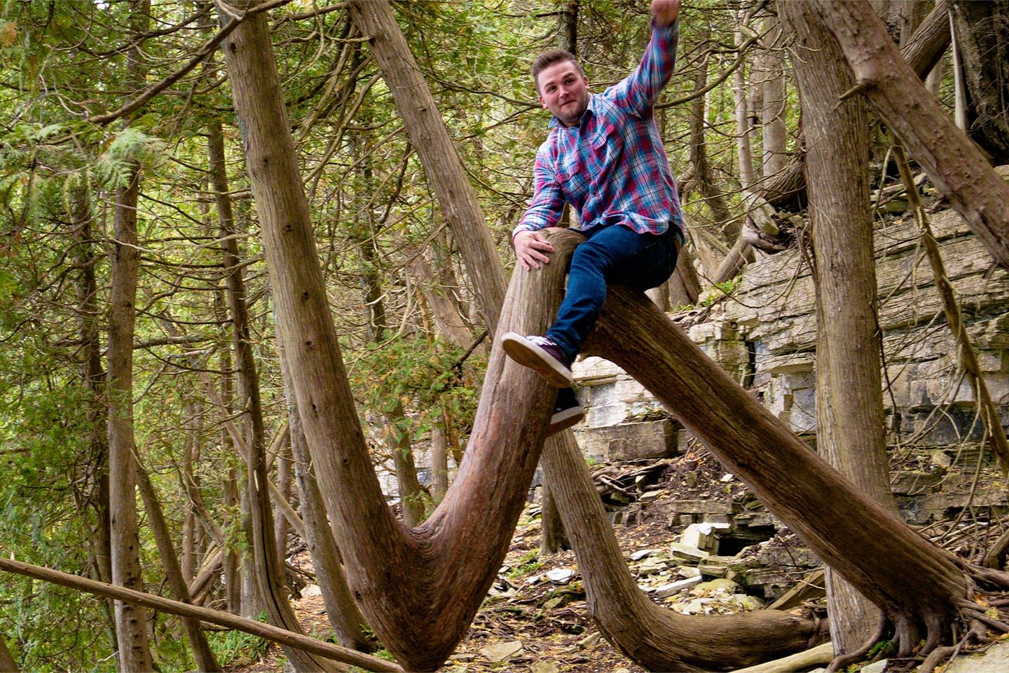 Mike riding a tree in Door County