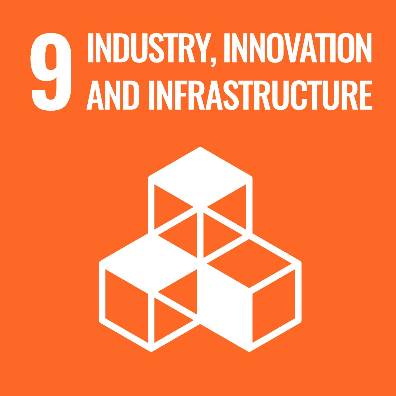 SDG 09