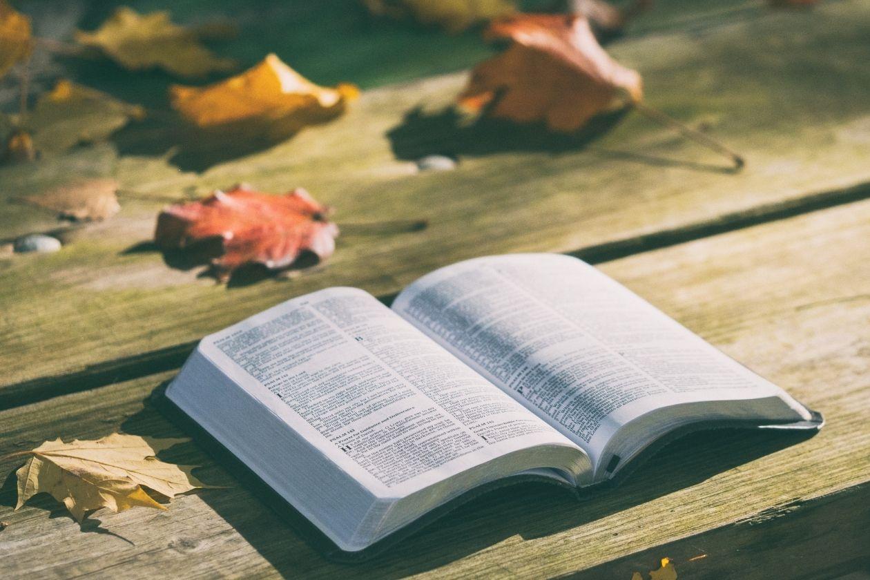 Aufgeschlagenes Buch auf Holzdielen. Im Hintergrund sind herbstliche Blätter zu sehen.
