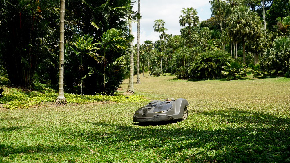 Robotic grass mower NParks