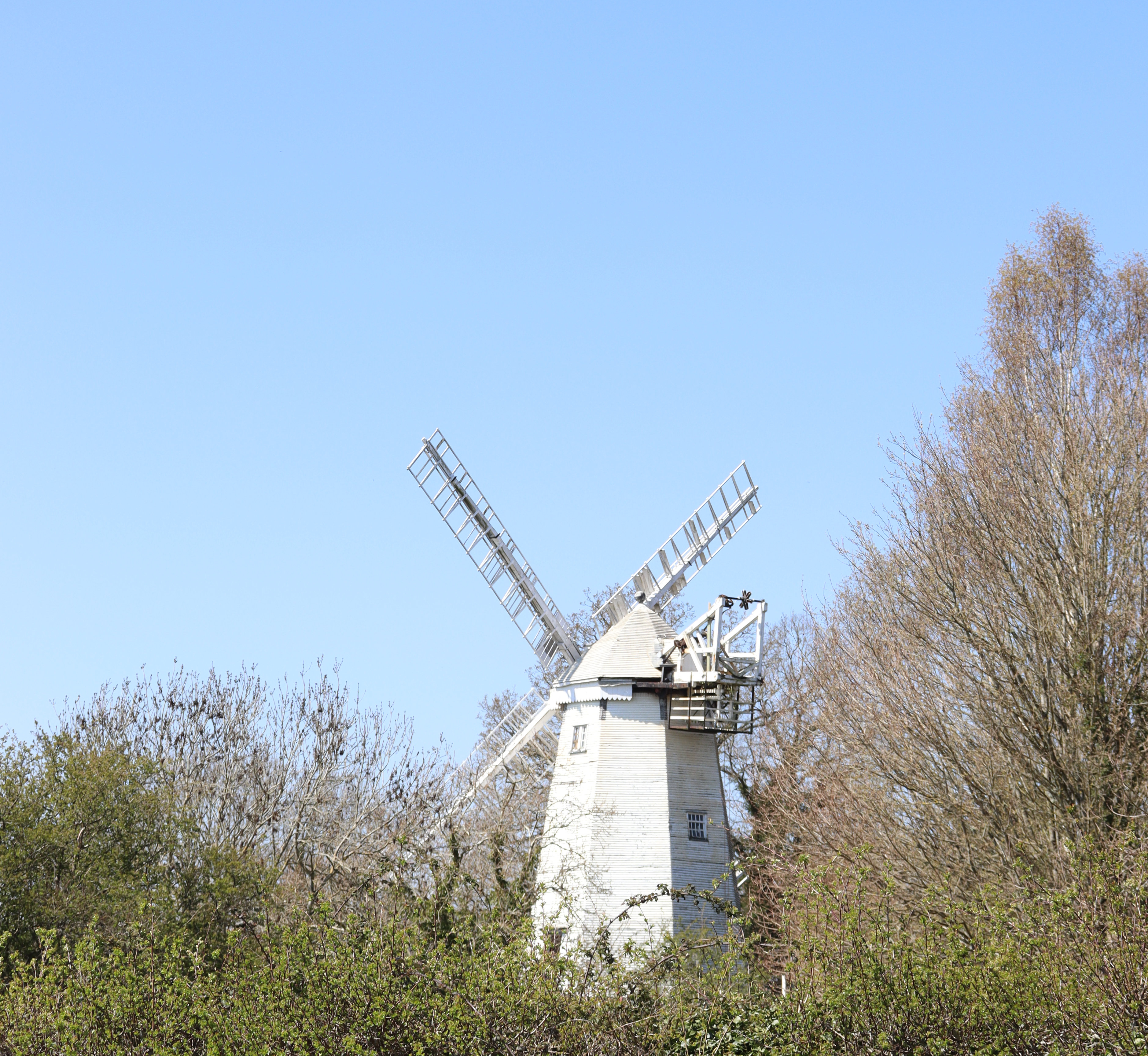 A white windmill behind some green bushes and blue skies.