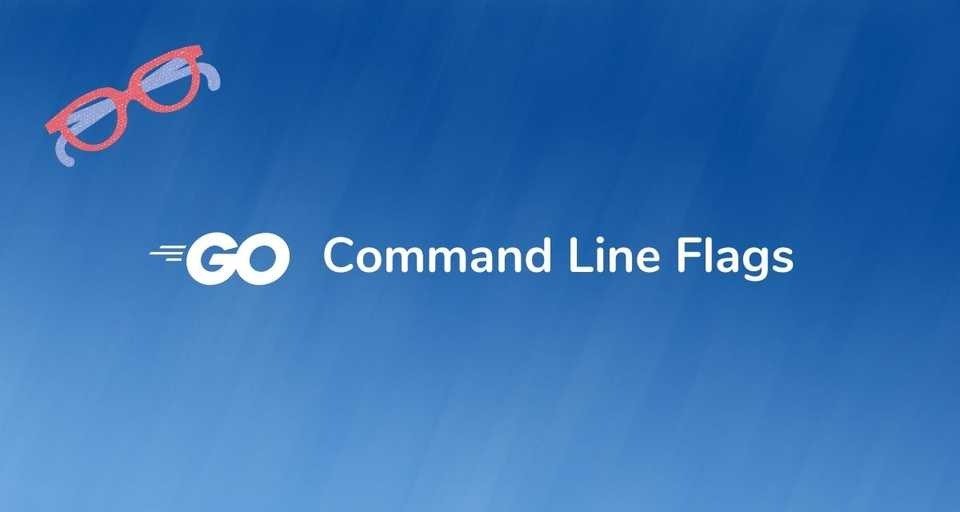 Golang Command Line Flags Options