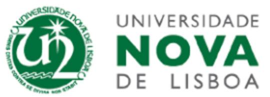 University of New Lisbon