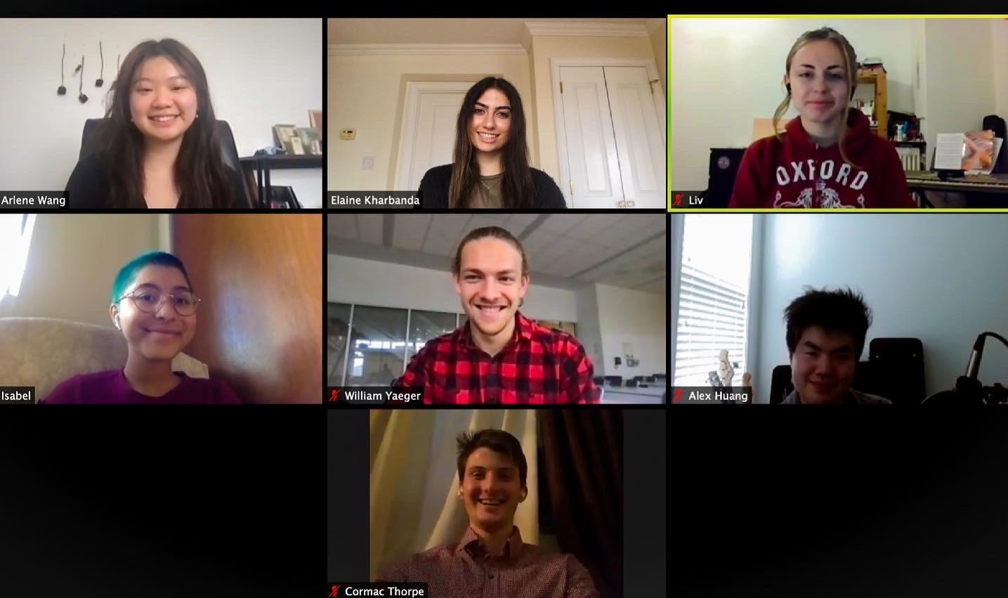 Screenshot of Gapyearly staff members on a zoom meeting