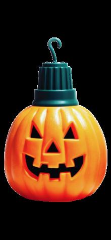 Pumpkin Light Bulb photo