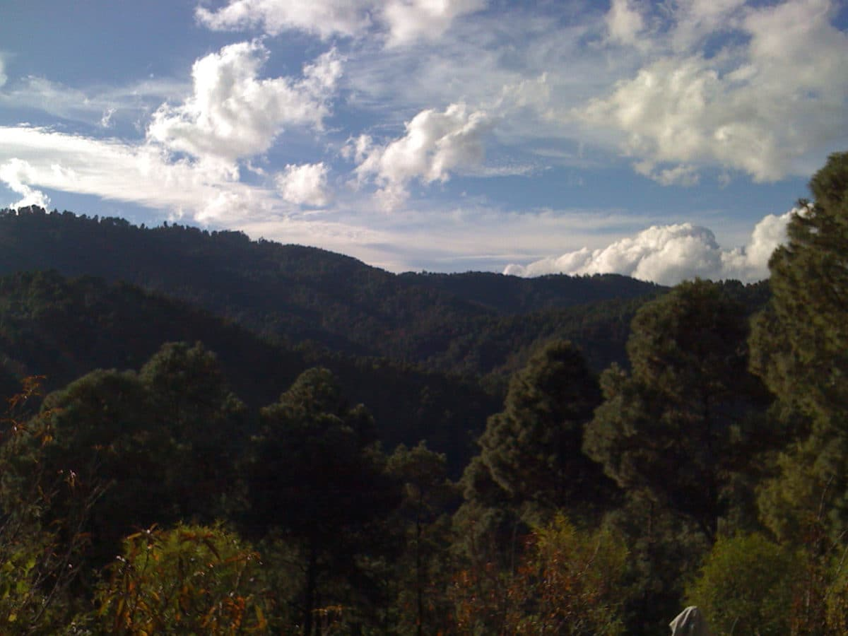 scenery at Mariam's grandfather's farm