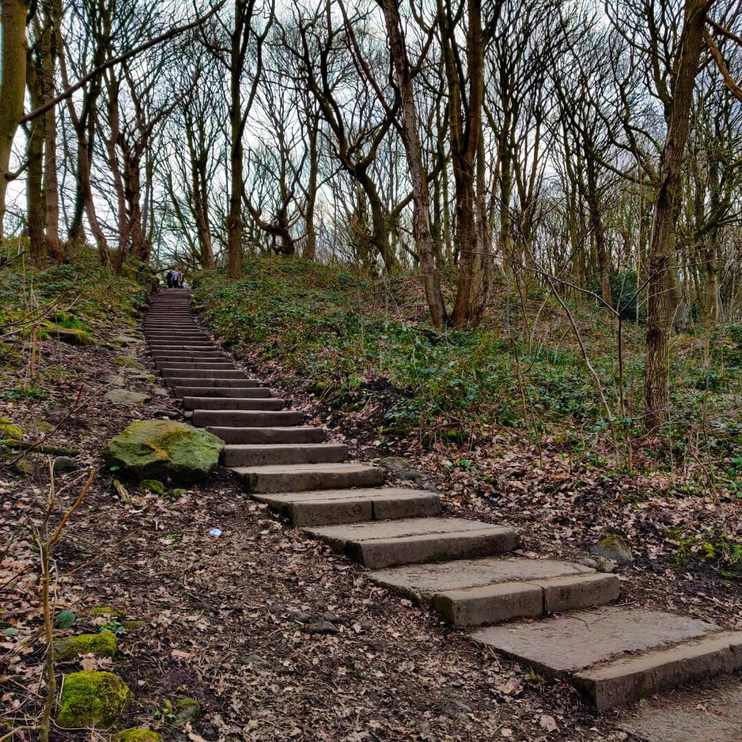 Steps up to Bramley Fall Woods
