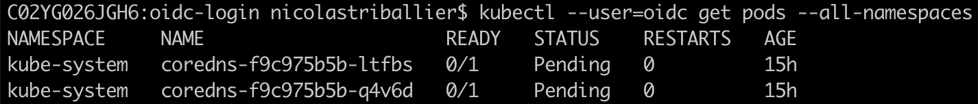 Terminal - Kubectl Get Pods