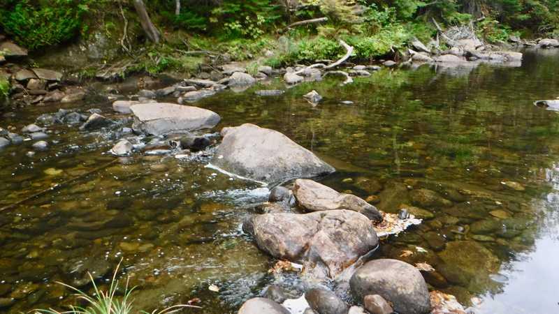 Orbeton Stream