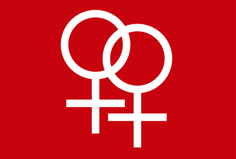 فمینیسم انقلابی