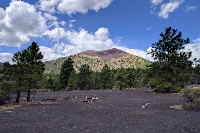 A clearing in a pine forest. The ground is covered in fine volcanic cinders. Beyond the clearing, a steep cinder cone with a distinctive red crater rim.