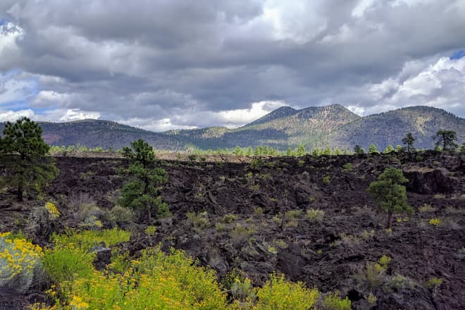 A rocky lava flow that looks like it should be in Hawaii, not Arizona. Low cinder cones rise beyond it. In the foreground, bright yellow-orange flowers.