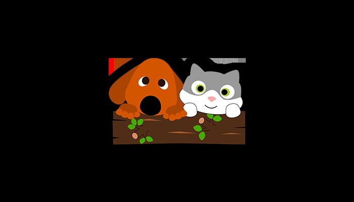 dog-cat