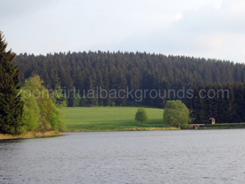 Novelty Virtual Background for Zoom view of lake with forest