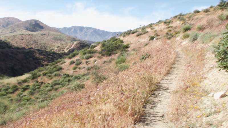 Distant hiker