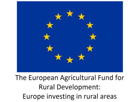 EU_Logo_-_Solid_1_480x480