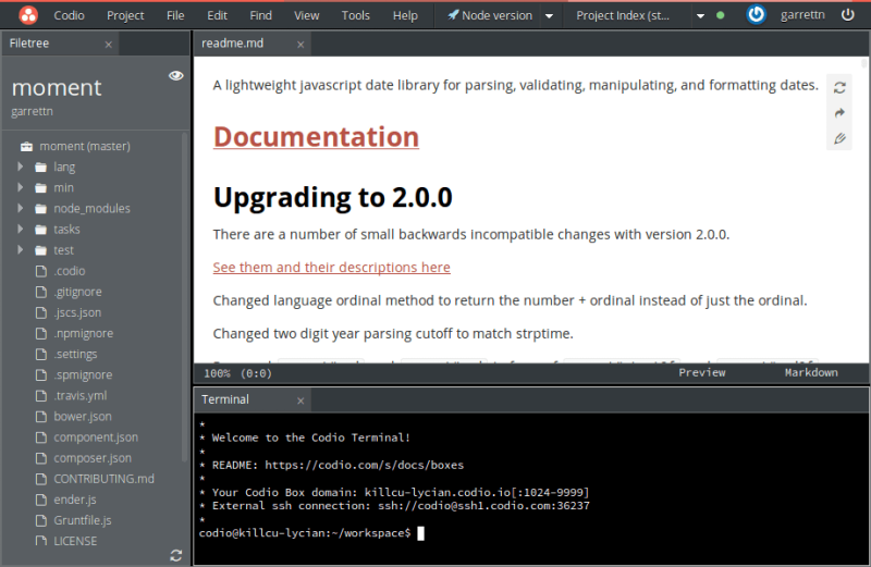 Screenshot of Codio's IDE