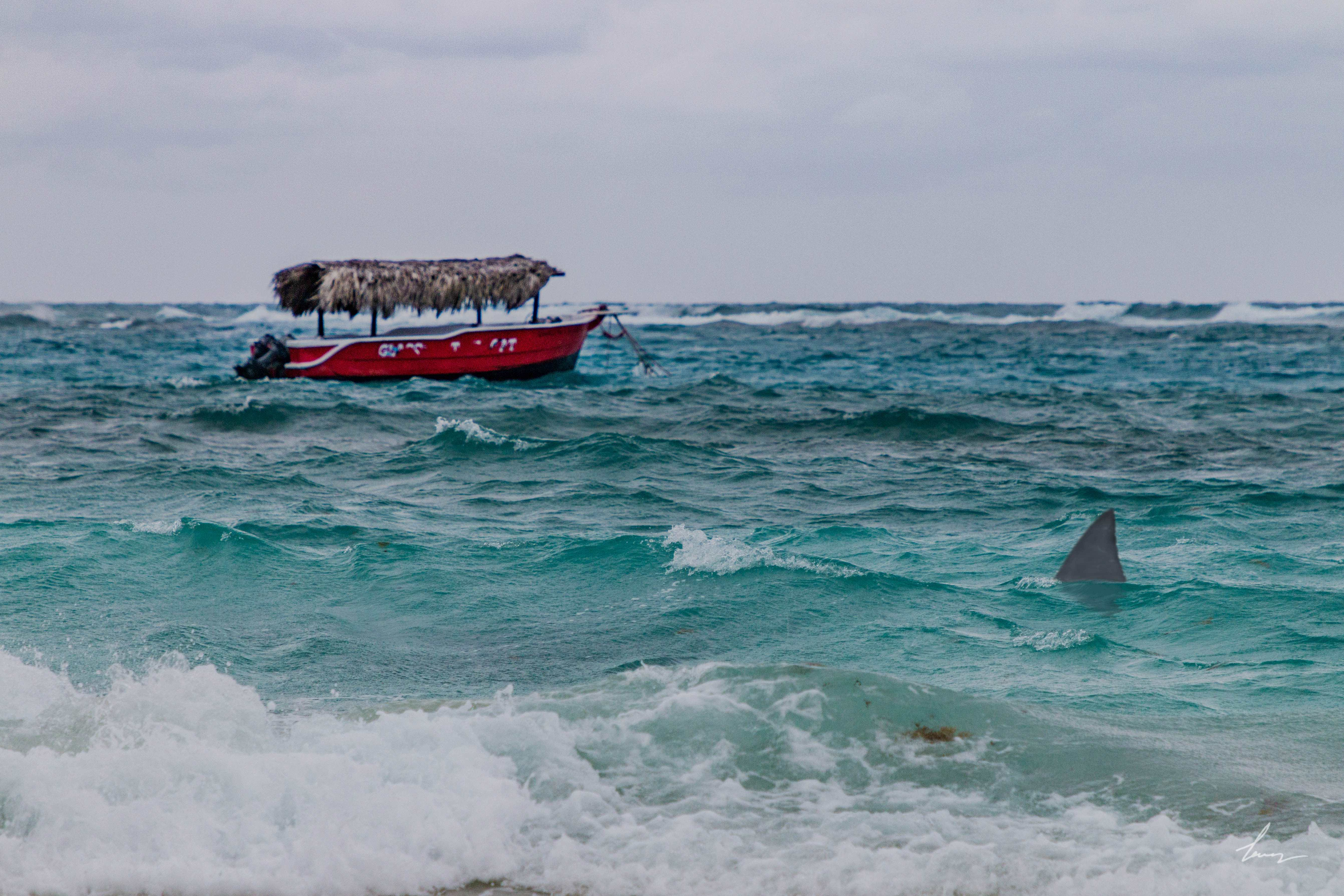 Fishing Boat - Punta Cana, Dominican Republic