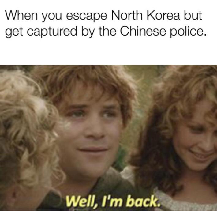 Meme with Samwise Gamgee
