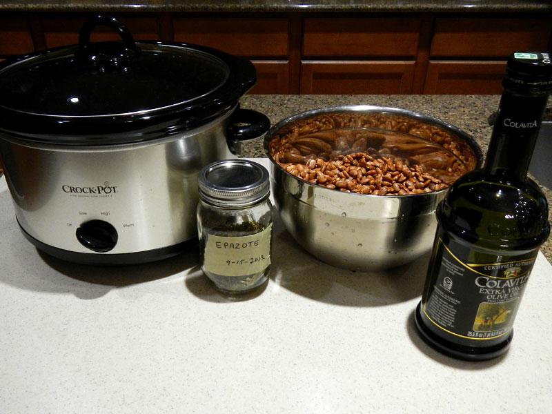 Basic Pinto Beans Setup