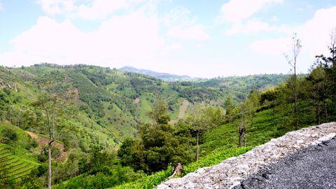 Hillock views