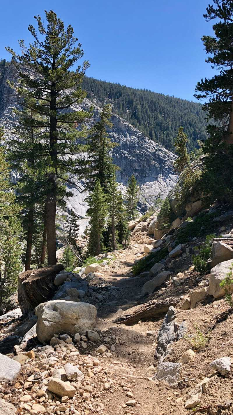 Descending trail on the PCT