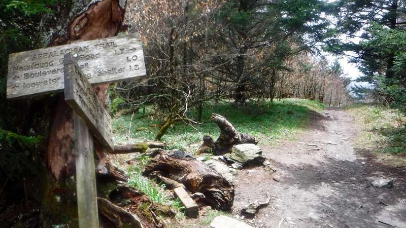 Sweat Heifer Trail