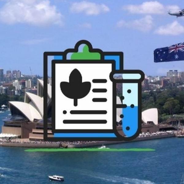 Australia's Trial of Recreational Cannabis