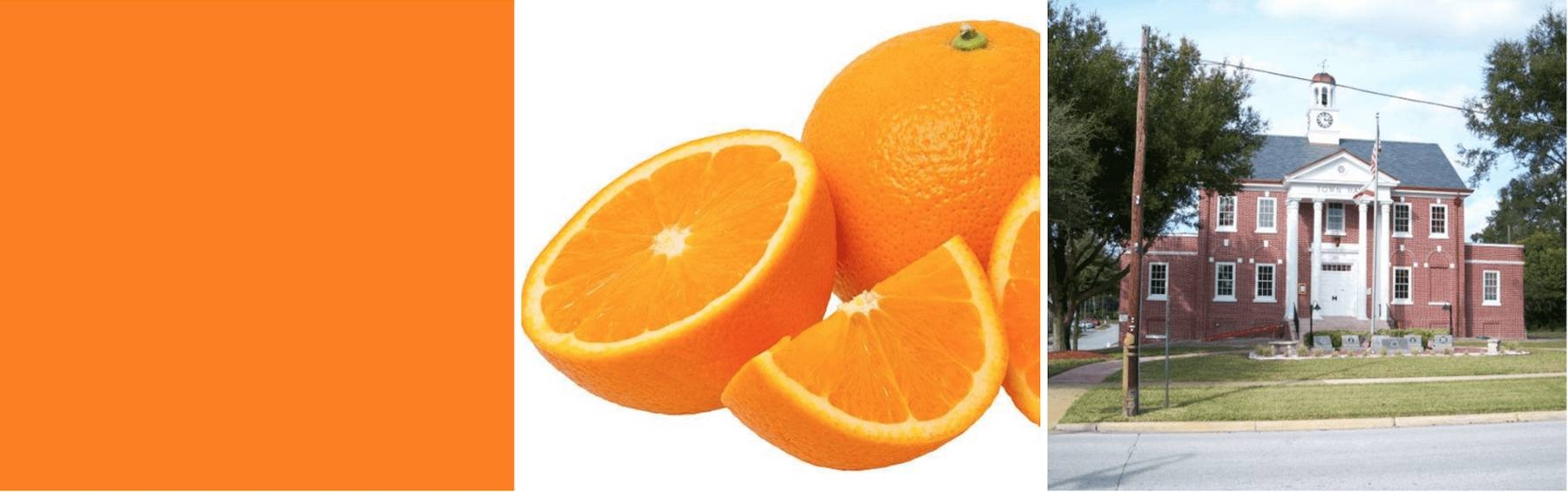 An image showing different meanings of the word 'orange'.