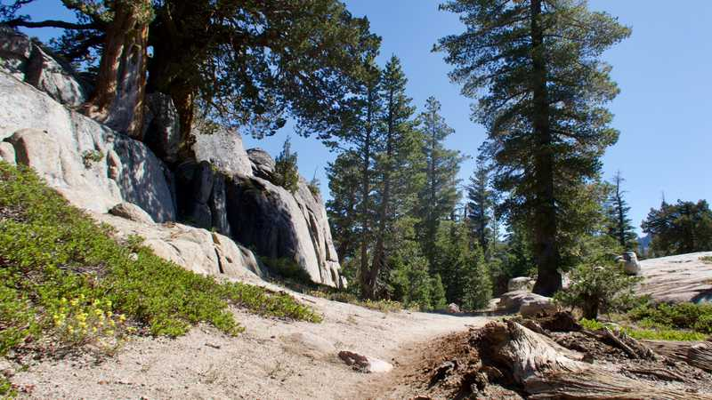The PCT passes a rock wall