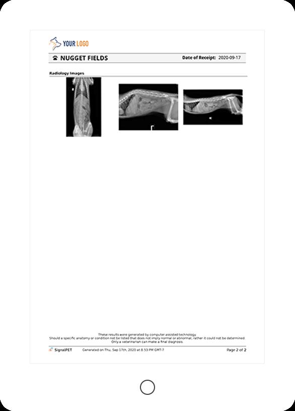 signalray-report-3b