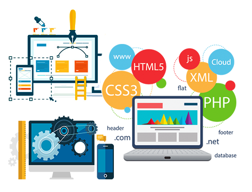 Web Development Splash
