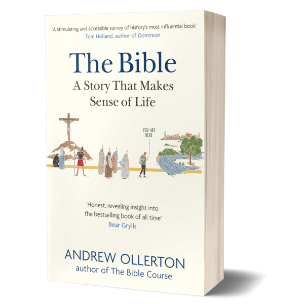 The front cover of The Bible: A Story That Makes Sense of Life showing an illustrative timeline of biblical events.