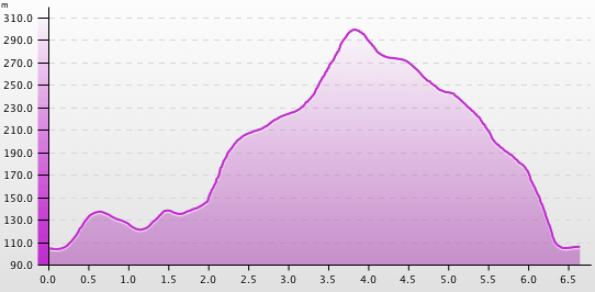 Run Profile