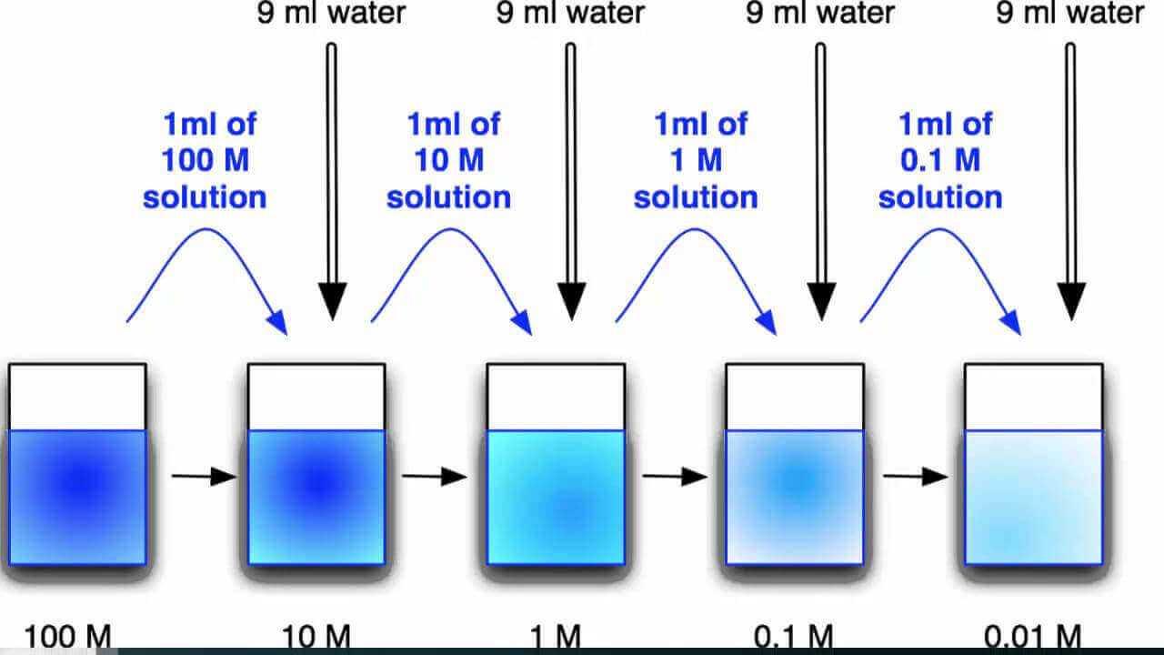 PP(m) Orantı Sistemi