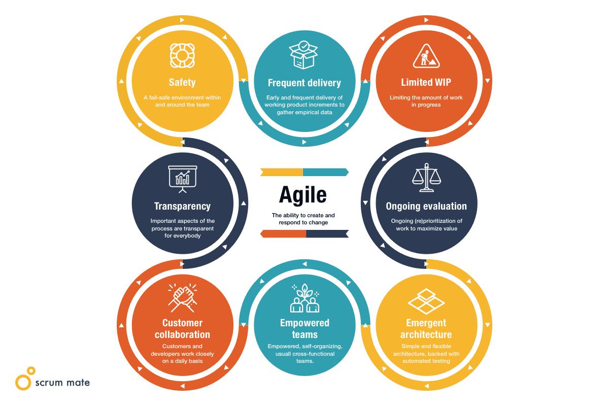 The agile model