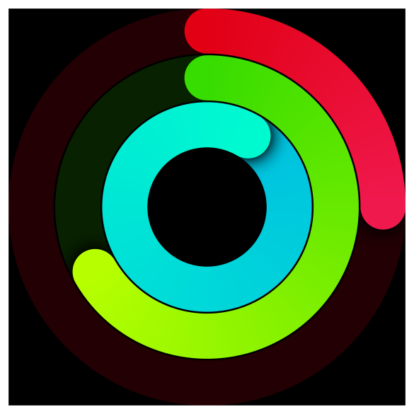 An activity ring view
