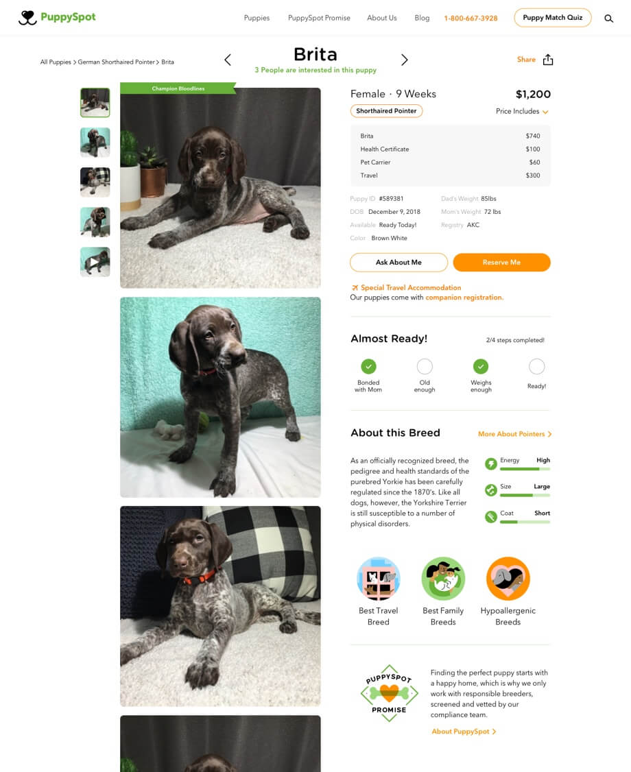 Puppy Spot education page